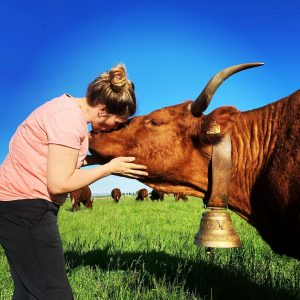 Charlotte vache salers